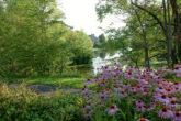 fontaine du lac du village