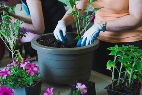Atelier pot fleuri