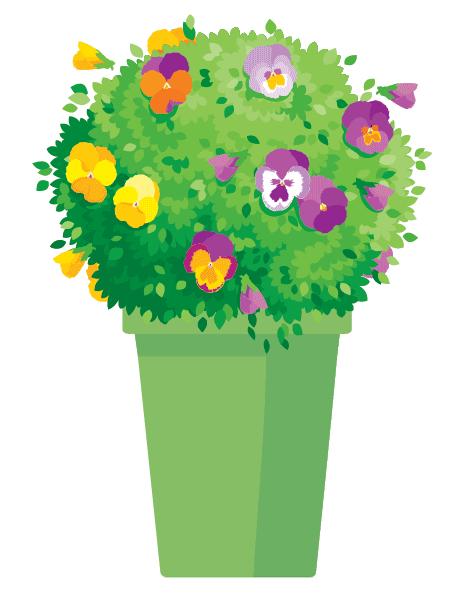 pot-fleuri-grand.png